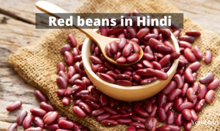 Red beans in Hindi